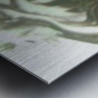 a5e6b7614983039c9a621bfbbb9c1f40.042_UG Metal print