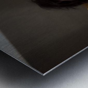 Lunette Metal print