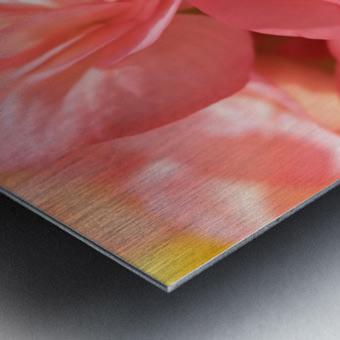 Pink pastel flower Metal print