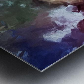 0D586635 9855 4F79 9A7B 27C5AD529DC4 Metal print
