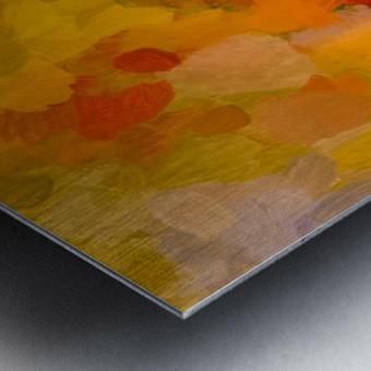 A75CD559 B3C2 4FC9 888F 28BEFB5B2E8F Metal print