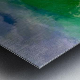 0EC2B889 7F4C 4EED AF03 C58570386CC9 Metal print