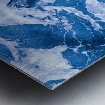 Tropical_XI Metal print