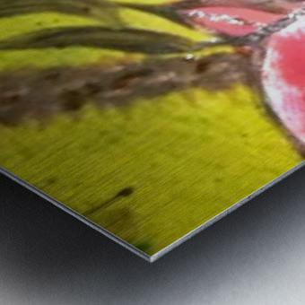 0 14 3 Metal print