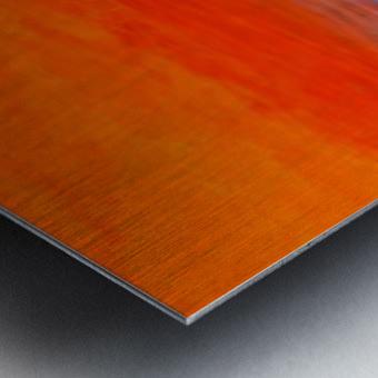 2F82FC16 2E59 496D A9ED 6BB3912B8D29 Metal print