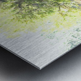 IMG_0120 Metal print