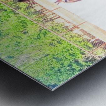 100_0842 4 Metal print