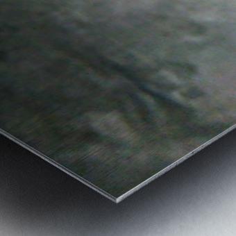 1548132447945 Metal print