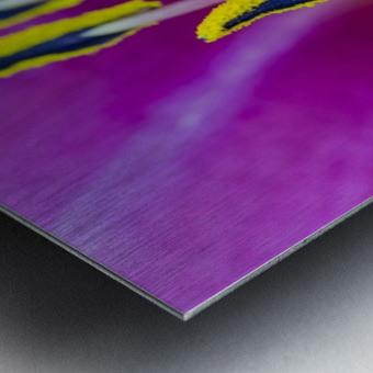 Macro of Purple Day Lily Stamen Metal print