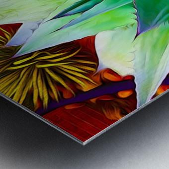 Succulent Dewdrop Metal print
