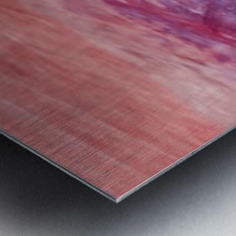 64E08036 354F 45E1 8C4C B6D947E99881 Metal print