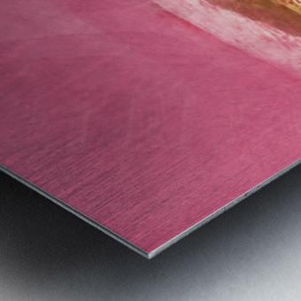 341984EC B935 4BCC BD3B 4F62A6CA8912 Metal print