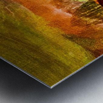 60C4DABA D8CF 4C43 BC57 BD9122C09173 Metal print
