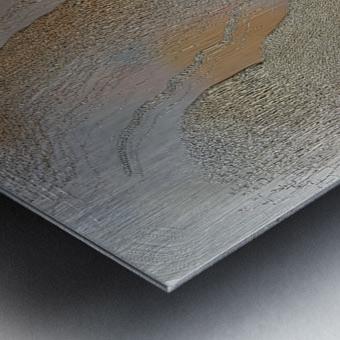 Strands 1 Metal print