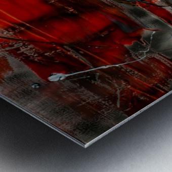 3037   beautiful dawn Metal print