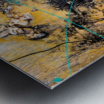 Sophia Deux Metal print