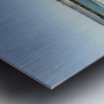 259BF767 2ACC 4C36 BB5F E0D6B78A5BB0 Metal print