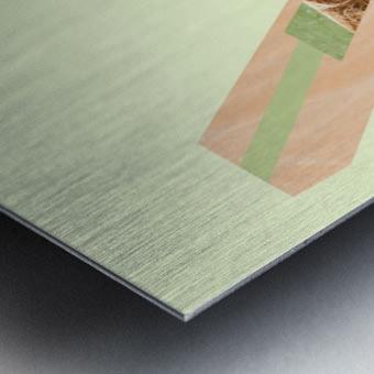 Yak Metal print