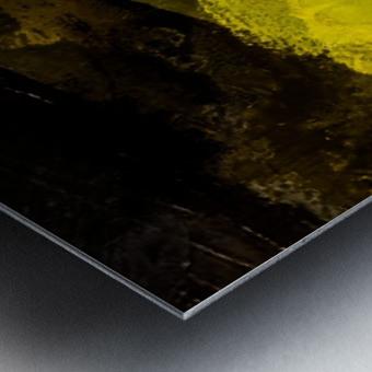 7F5487EE 6C15 48F7 99B4 88974A33E9F1 Metal print