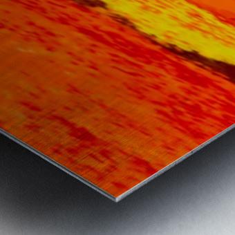D7416FC1 3FE9 4717 BC3C 11C9948DC589 Metal print