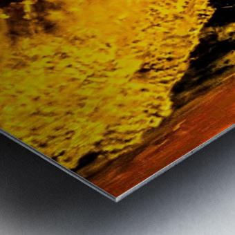 10E4D7ED 958A 4074 91A3 4A59C63D64AA Metal print