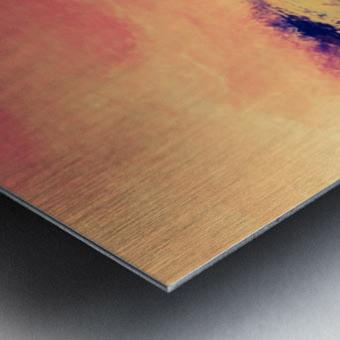 A5CA81B0 7E7A 4B7F 80A0 189E70ADC268 Metal print