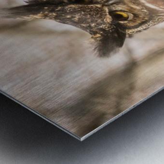 Great horned Metal print