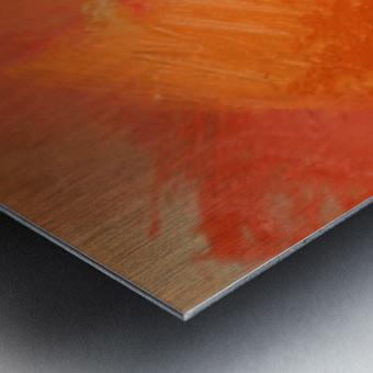7B3A21DB CC9E 442D A728 9562D5FF6B9B Metal print