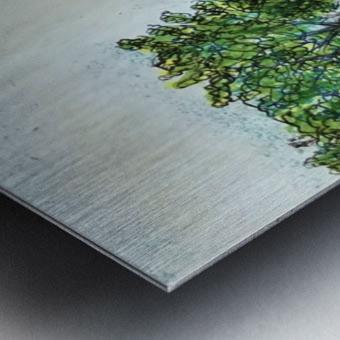 Across The Creek Metal print