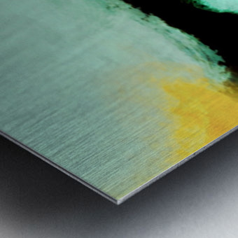 9311F079 169E 49D9 92BE F12FB21A6E2A Metal print