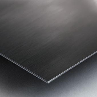 Sagara Metal print