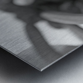 Keep Climbing B&W Metal print