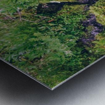 HDstudio.us 329 Metal print