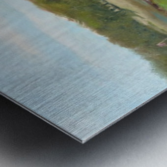 Swimming Hole Metal print