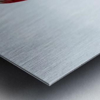 Common Redpoll Metal print