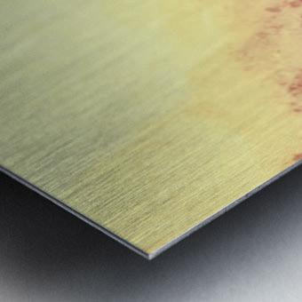AAB52268 843C 4C89 BA19 096FBB74CAD4 Metal print