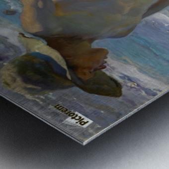 Pescador Metal print