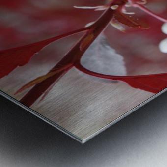 White Blood 2 Metal print