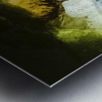 46CD6FA6 351F 4CAB B780 051ACF519992 Metal print