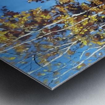 Fall Trail Fishcreek Park Metal print