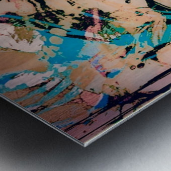 IMG_6116 Metal print