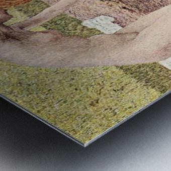 The vanity detail by Giovanni Segantini Metal print