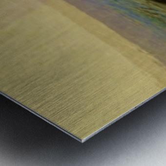 45E4C409 1EE6 49DD A8A4 E260F582E49D Metal print