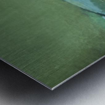 A5810BEF 77A2 4103 892D ABF5742E95DA Metal print