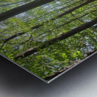 Landscape (51) Metal print
