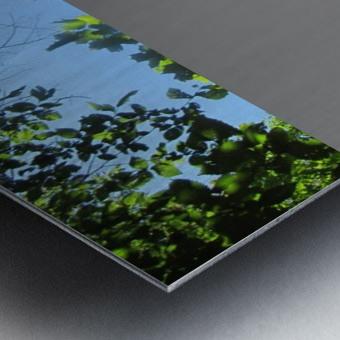 Landscape (181) Metal print