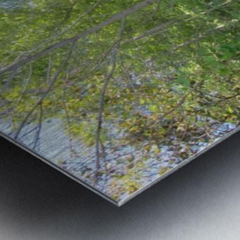 Landscape (288) Metal print