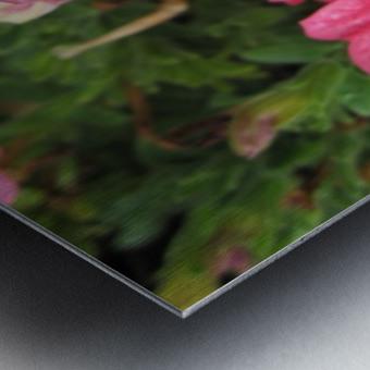 Flowers (86) Metal print