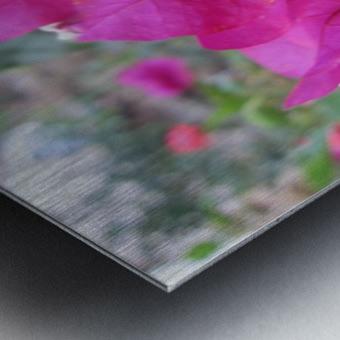 Flowers (47) Metal print