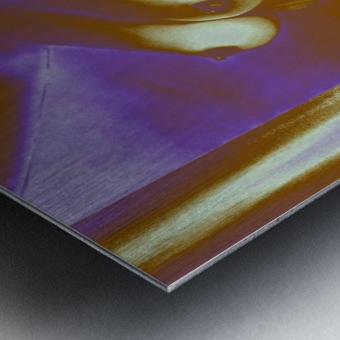 Violet Inspiration Metal print